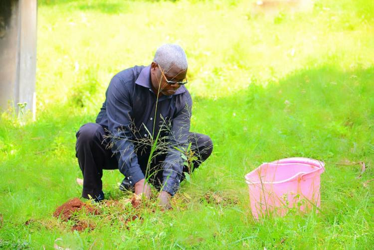 Marking the World Environment Day with Pride