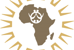 African Research Universities Alliance